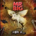Mr. Big - What If